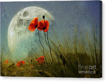 Poppy In The Moon Canvas Print by manhART