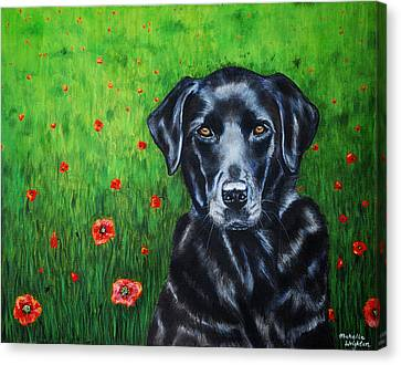 Poppy - Labrador Dog In Poppy Flower Field Canvas Print by Michelle Wrighton