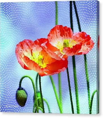Poppy Series - Garden Views Canvas Print by Moon Stumpp