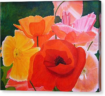 Poppy Splendor Canvas Print