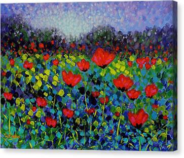 Nature Poster Art Canvas Print - Poppy Vista by John  Nolan