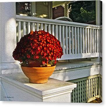 Porch Beauty Canvas Print by Brian Wallace