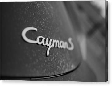 Standing Porsche Cayman S Canvas Print