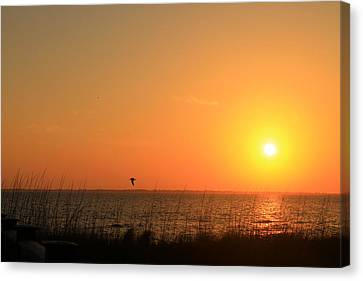 Port St. Joe Sunset Canvas Print