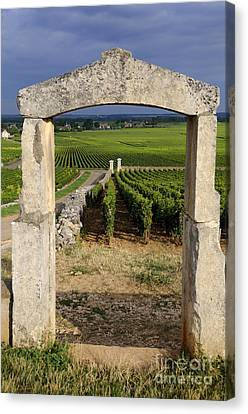 Portal  Of Vineyard.burgundy. France Canvas Print by Bernard Jaubert
