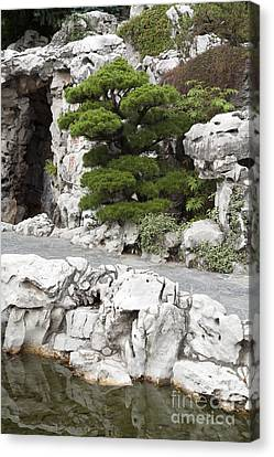 Portland Lan Su Gardens Canvas Print by Peter French