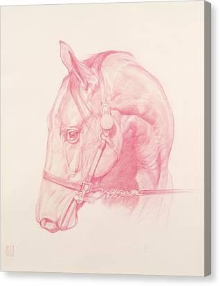 Portrait Head Canvas Print by Emma Kennaway