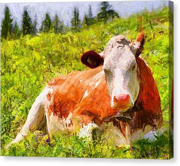 Portrait Of A Cow 2 Canvas Print by Kai Saarto
