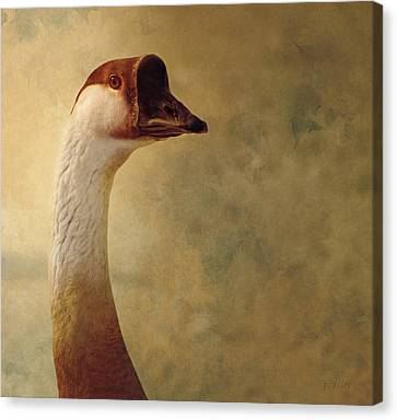 Portrait Of A Goose Canvas Print by Fran Riley