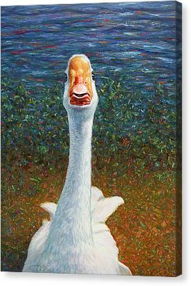 Portrait Of A Goose Canvas Print by James W Johnson