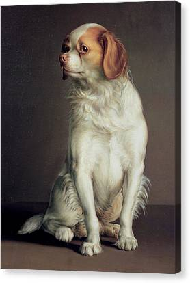 Portrait Of A King Charles Spaniel Canvas Print by Louis Leopold Boilly