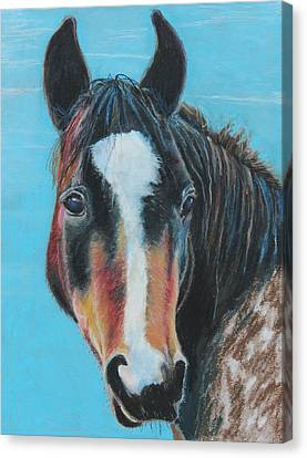Portrait Of A Wild Horse Canvas Print by Jeanne Fischer