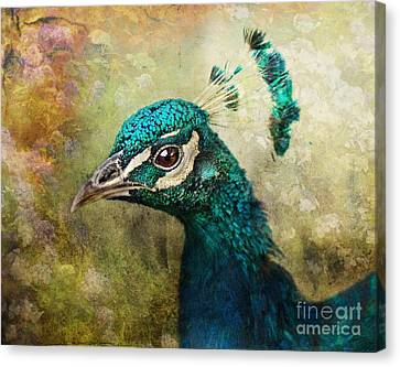 Portrait Of A Peacock Canvas Print by Pauline Fowler