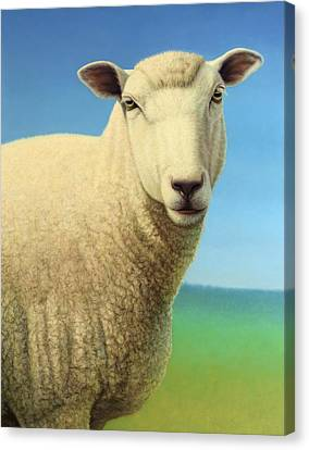 Sheep Canvas Print - Portrait Of A Sheep by James W Johnson