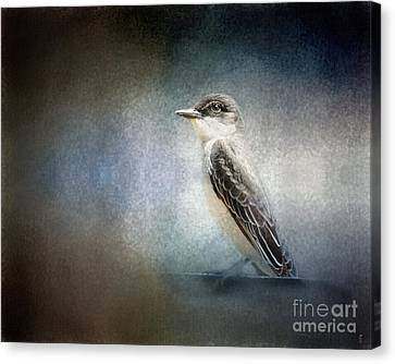 Portrait Of An Eastern Kingbird Canvas Print