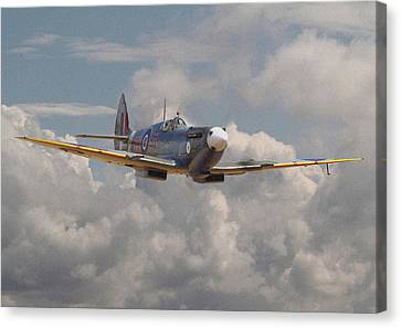 Fighter Canvas Print - Portrait Of An Icon by Pat Speirs