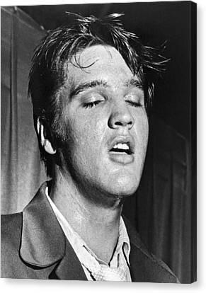 Portrait Of Elvis Presley Canvas Print