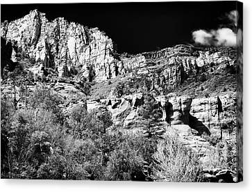 Portrait Of Oak Creek Canvas Print by John Rizzuto