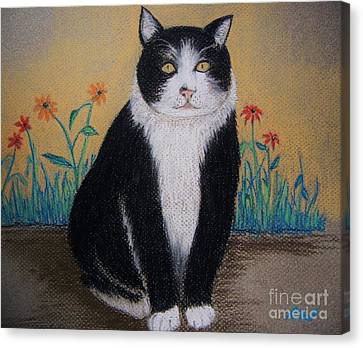 Portrait Of Teddy The Ninja Cat Canvas Print by Reb Frost