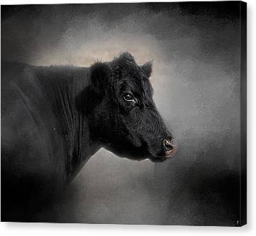 Angus Canvas Print - Portrait Of The Black Angus by Jai Johnson