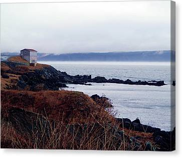 Portugal Cove Canvas Print by Zinvolle Art