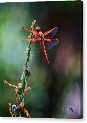 Canvas Print featuring the photograph Positive Forces by Patrick Witz