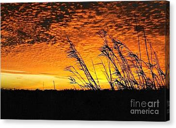 Post Hurricane Rita At Dockside In Beaumont Texas Usa Canvas Print by Michael Hoard