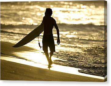 Post Surf Gold Canvas Print by Sean Davey