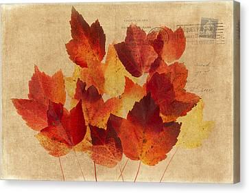 Postcard Leaves Canvas Print by Rebecca Cozart