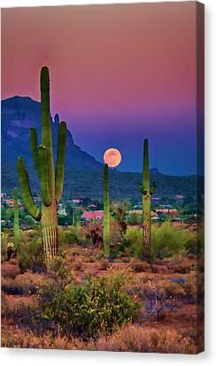Postcard Perfect Arizona Canvas Print