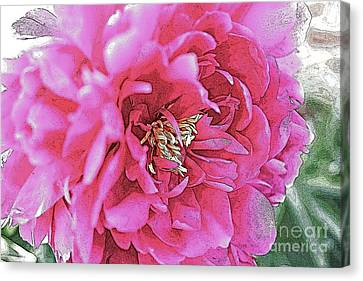 Poster Flower Canvas Print by Alison Tomich