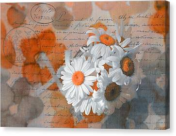Pot Of Daisies 02 - S3r-rngt1d Canvas Print by Variance Collections