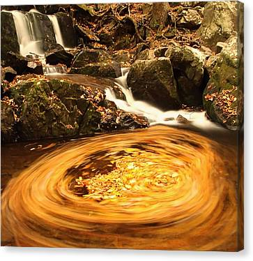 Pot Of Gold In Great Smoky Mountain National Park Canvas Print