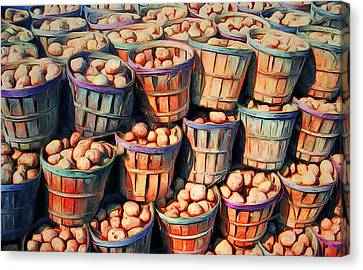 Potato Still Life Canvas Print by Yury Malkov