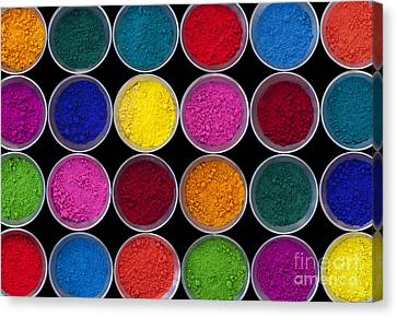 Of Color Canvas Print - Pots Of Coloured Powder Pattern by Tim Gainey
