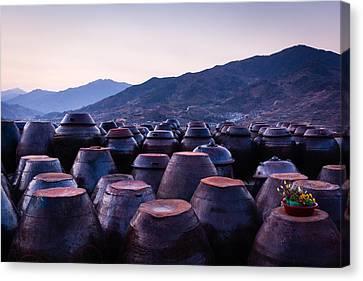Pots Of Plum Canvas Print by Roy Cruz