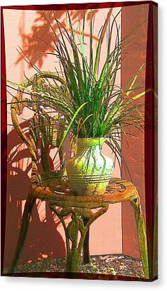 Potted Plant In Chair No 3 Canvas Print by Ginny Schmidt