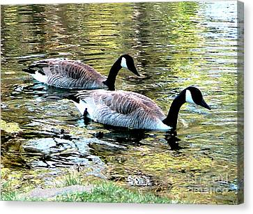 Canvas Print featuring the photograph Poultry In Motion by Cristophers Dream Artistry