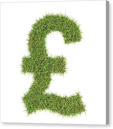 Sterling Canvas Print - Pound Sterling Symbol by Geoff Kidd