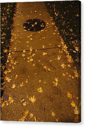 Poured Gold Canvas Print by Guy Ricketts