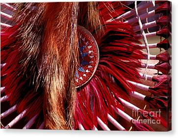 Pow-wow Costume Canvas Print by Paul W Faust -  Impressions of Light