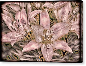 Flower Art Canvas Print - Powder Pink Lillies Vintage Art by Lesa Fine
