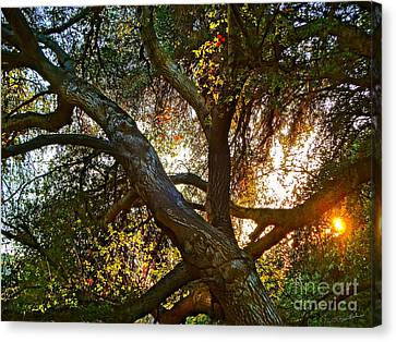 Power Entwined Canvas Print by Gem S Visionary