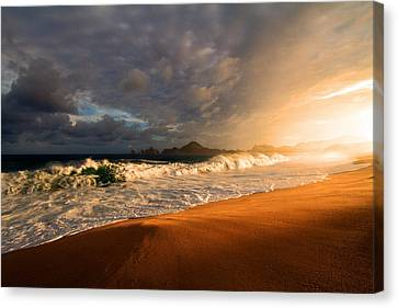 Canvas Print featuring the photograph Power by Eti Reid