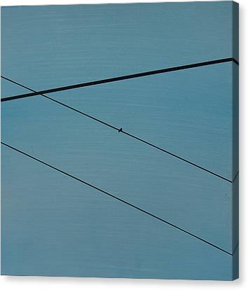 Power Lines 03 Canvas Print by Ronda Stephens
