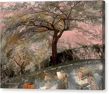Pozuelo Autumn Canvas Print by Alfonso Garcia