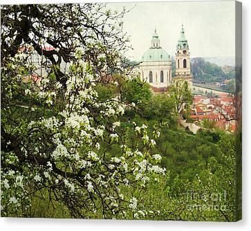 Prague In Bloom II Canvas Print