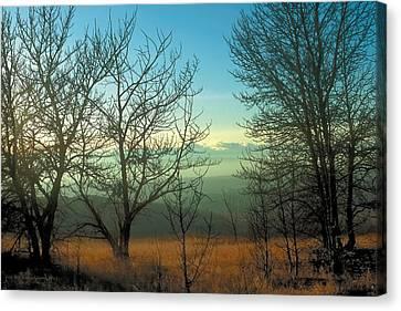Prairie Autumn 2 Canvas Print by Terry Reynoldson