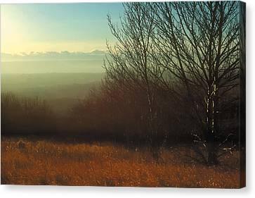 Prairie Autumn 4 Canvas Print by Terry Reynoldson