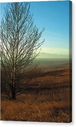 Canada Canvas Print - Prairie Autumn 5 by Terry Reynoldson